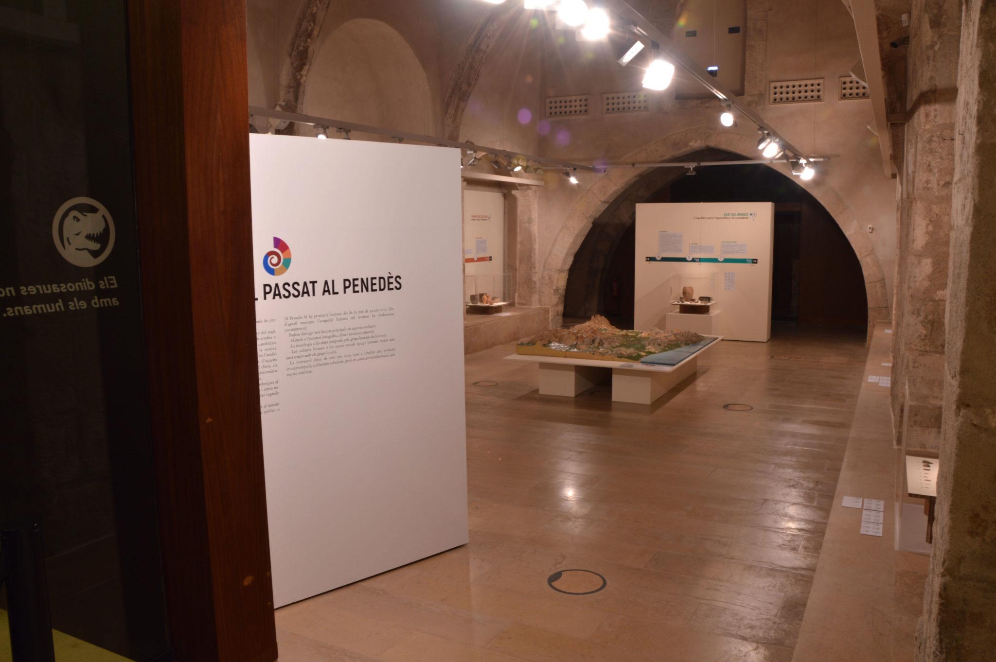 Abans de la Vinya Angels Pinyol E - ABANS DE LA VINYA - Exposició sobre la història de la Vinya del Penedès