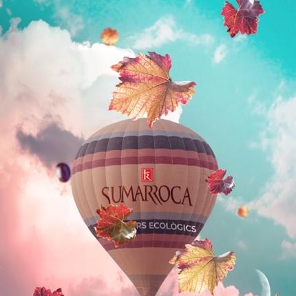 sumarroca wine cava penedes design vins disseny grafic  - SUMARROCA - Motion Graphics Ecology Lifestyle Wines Cava Penedès